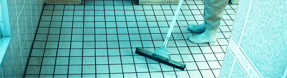 workjpg_cleaning